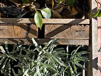 Diseño y reciclaje Upcycling