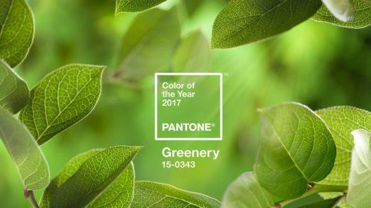 Color pantone 2017