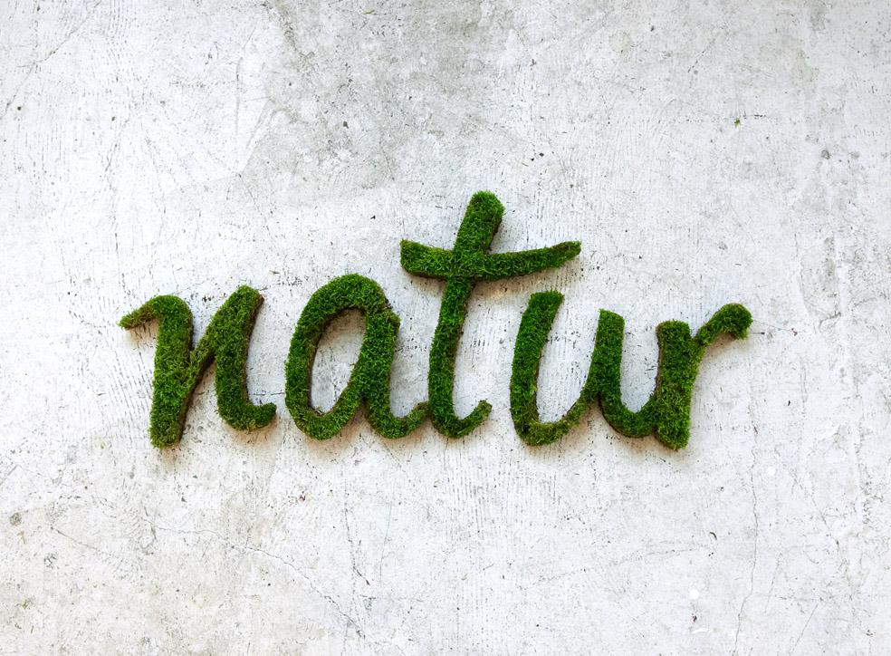 graffitis natur