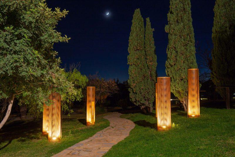 Paisajismo Win Garden Caterpillar Agrupación Noche