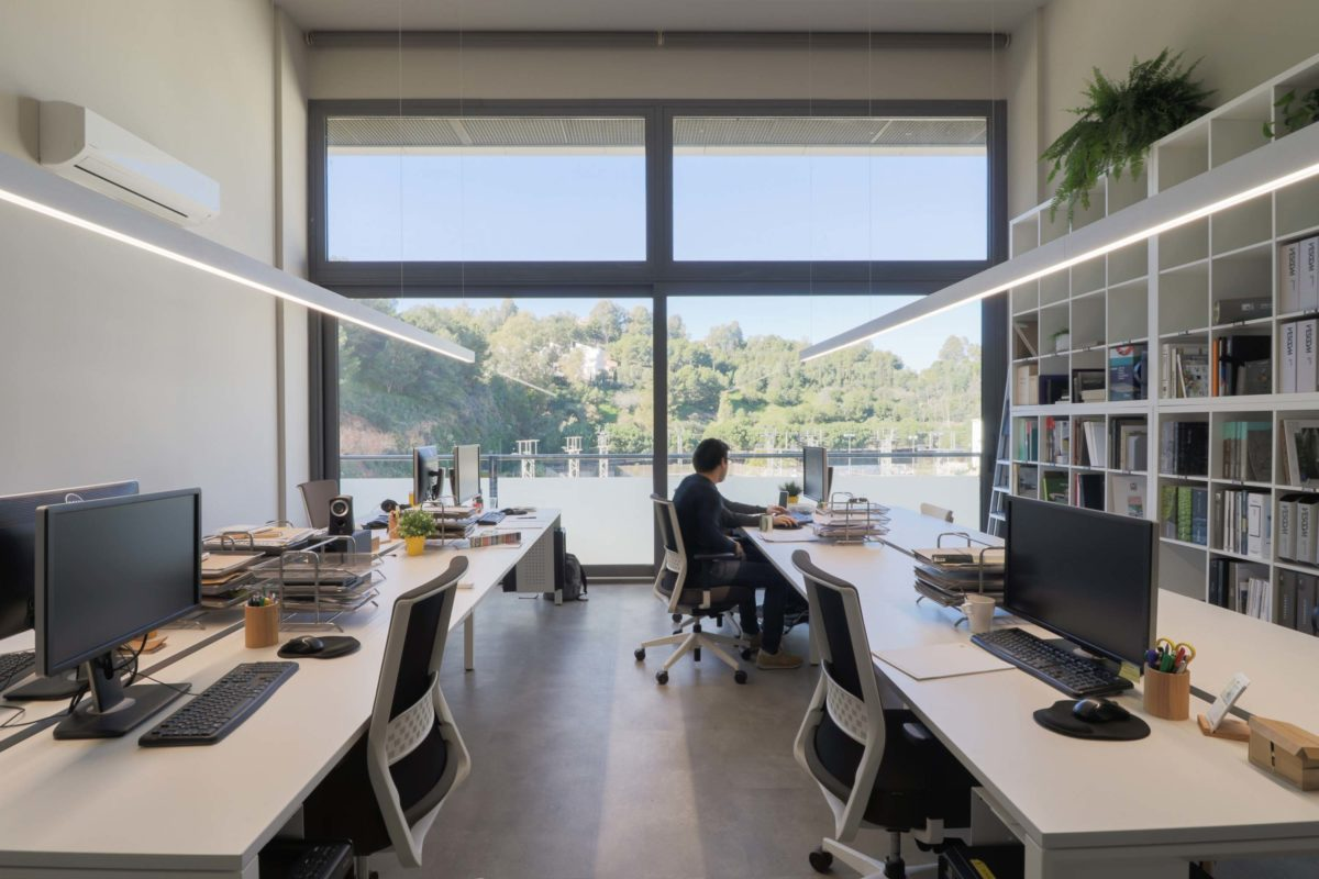 Oficinas pet friendly trabajo dise o interior gr fico e infografia 3d dika estudio creativo - Ets arquitectura malaga ...