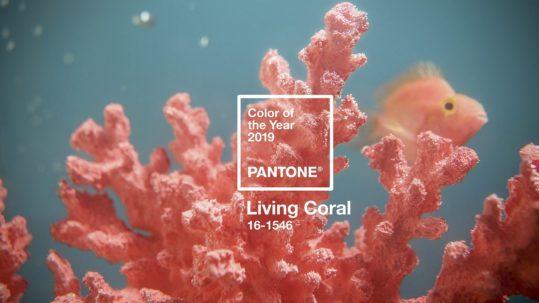 Pantone 2019 Living Coral Portada