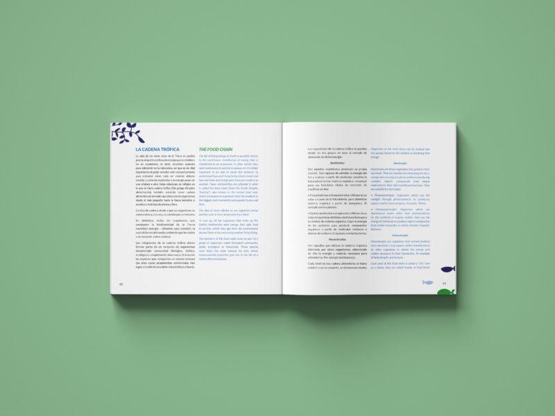 Diseño editorial contenido
