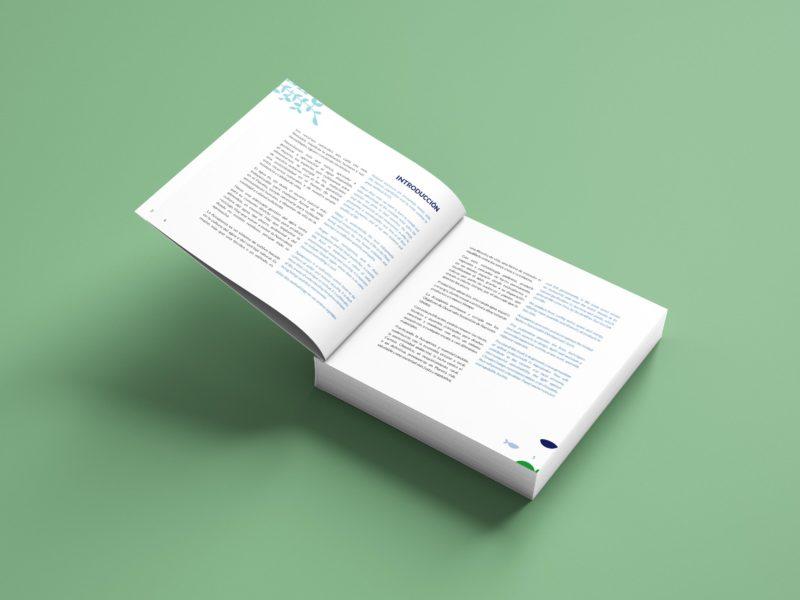 Diseño editorial introducción